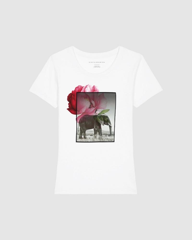 Elephant T-Shirt Rodeo